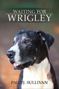 wrigley_front_black_20